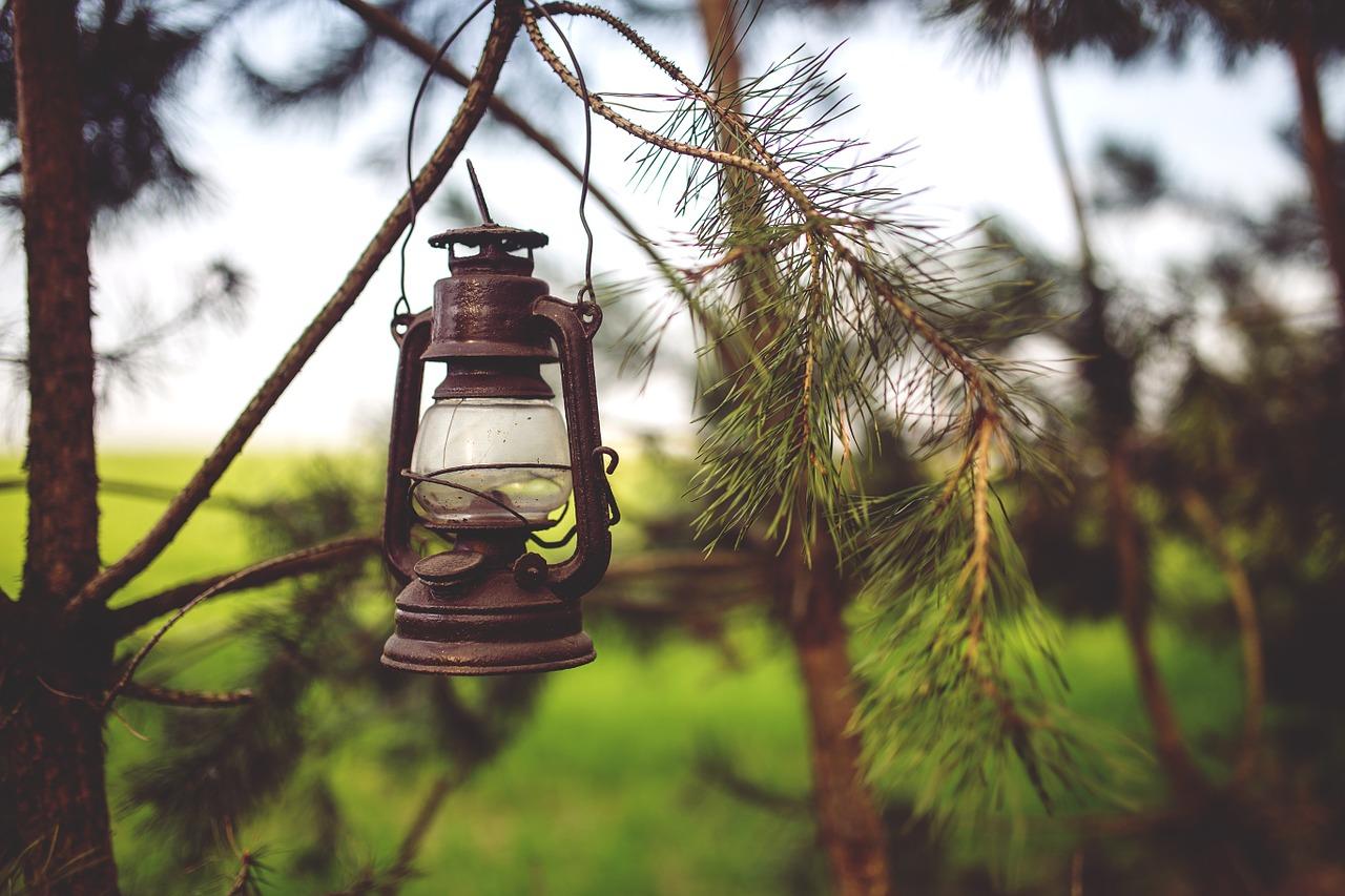 lampy ogród